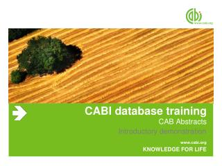 CABI database training