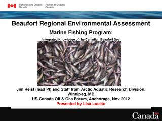 Beaufort Regional Environmental Assessment Marine Fishing Program: Integrated Knowledge of the Canadian Beaufort Sea