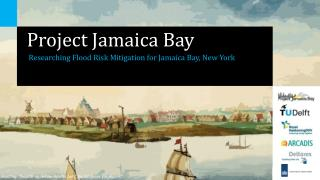 Project Jamaica Bay