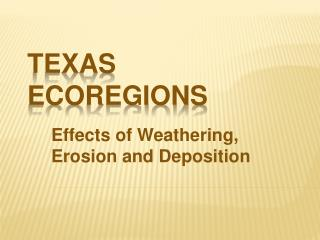 Texas Ecoregions