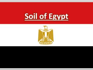 Soil of Egypt