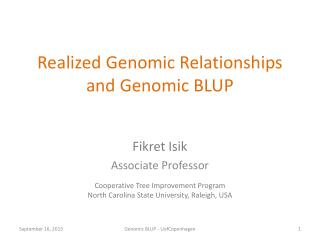 Realized Genomic Relationships and Genomic BLUP