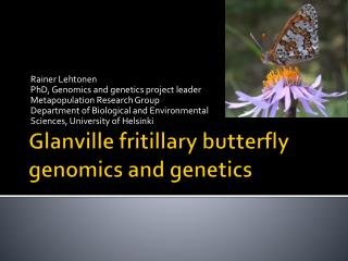Glanville fritillary butterfly genomics and genetics