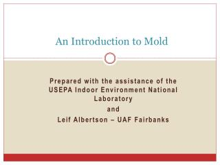 An Introduction to Mold