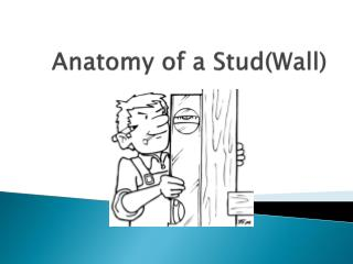 Anatomy of a Stud(Wall)