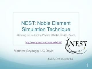 NEST : Noble Element Simulation Technique