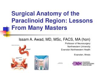 Surgical Anatomy of the Paraclinoid Region: Lessons From Many Masters