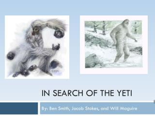 In Search of the Yeti