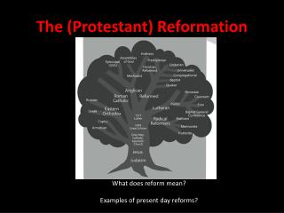 The (Protestant) Reformation