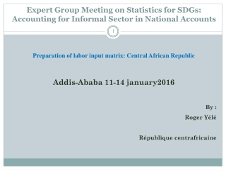 Expert Group Meeting on Statistics for SDGs: Accounting for Informal Sector in National Accounts