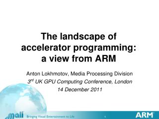 The landscape of  accelerator programming:  a view from ARM