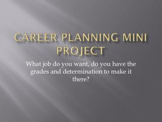 Career Planning Mini Project