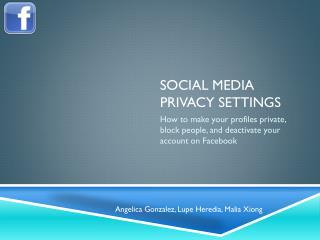 Social Media Privacy Settings