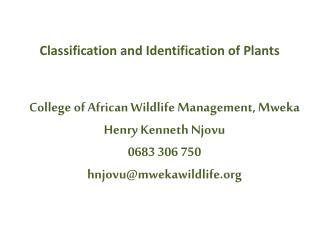 Classification and Identification of Plants
