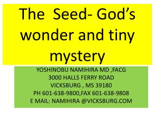 The  Seed- God's wonder and tiny mystery