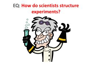 EQ:  How do scientists structure experiments?