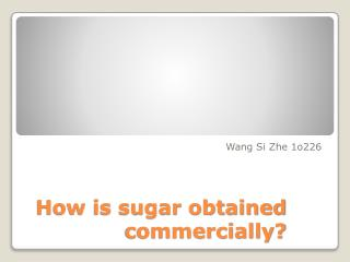 How is sugar obtained commercially?