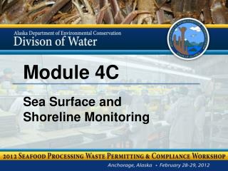 Module 4C Sea Surface and  Shoreline Monitoring