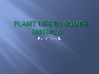 Plant life in  SOUTH AMERICA