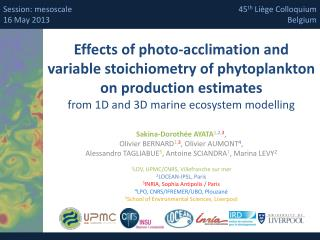 Effects of photo-acclimation and  variable stoichiometry of phytoplankton  on production estimates  from 1D and 3D mari