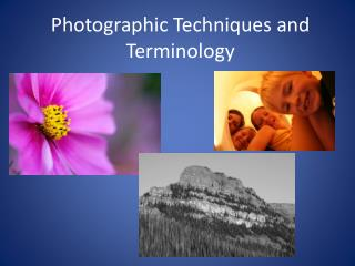 Photographic Techniques and Terminology
