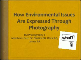 How Environmental Issues Are Expressed Through Photography