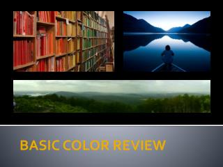 BASIC COLOR REVIEW