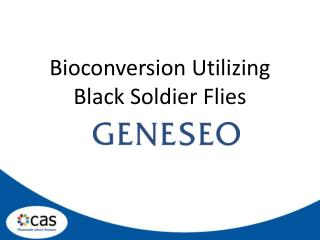 Bioconversion Utilizing Black Soldier Flies