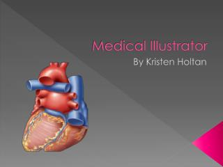 Medical Illustrator