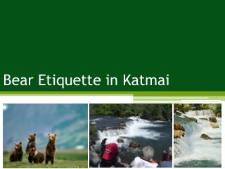 Bear Etiquette in Katmai