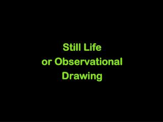 Still Life or Observational  Drawing