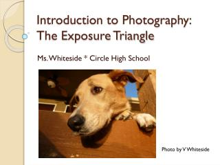 Introduction to  Photography: The Exposure Triangle