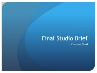 Final Studio Brief