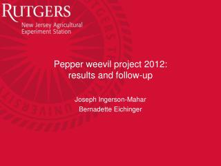 Pepper weevil project 2012: r esults and follow-up