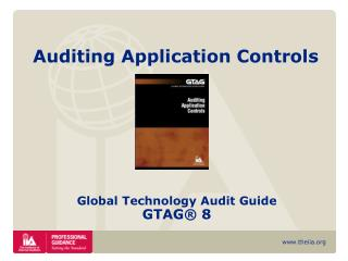 Auditing Application Controls