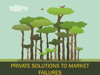 Private Solutions To Market Failures