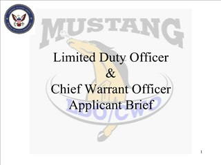 limited duty officer and chief warrant officer