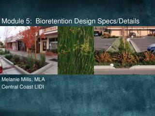 Module 5:  Bioretention Design Specs/Details