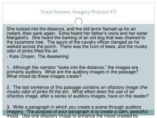 Voice lessons : Imagery Practice #3