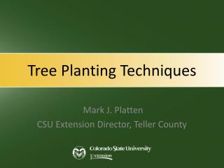 Tree Planting Techniques