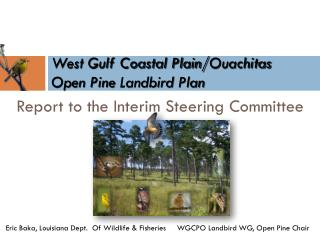West Gulf Coastal Plain/ Ouachitas Open Pine  Landbird  Plan