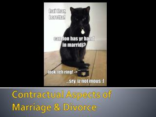 Contractual Aspects of Marriage & Divorce