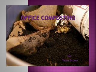 Office Composting