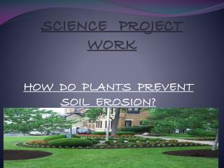 SCIENCE PROJECT WORK