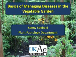 Basics of Managing Diseases in the Vegetable Garden