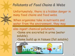 Pollutants of Food Chains & Webs
