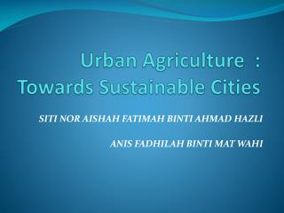 Urban Agriculture  : Towards Sustainable Cities