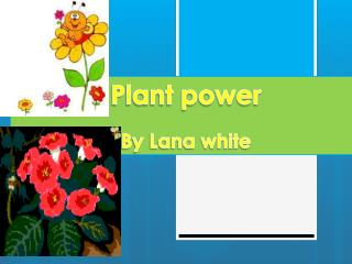 Plant power By Lana white