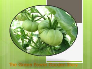 The Green Power Garden Story