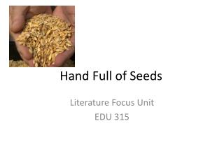 Hand Full of Seeds